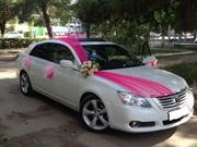 Обслуживание свадеб. Прокат авто