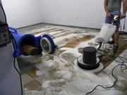 Чистка ковров,  химчистка ковров,  стирка ковров и мягкой мебели.